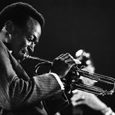 Download Miles Davis 'Au Privave' printable sheet music notes, Jazz chords, tabs PDF and learn this Trumpet Transcription song in minutes