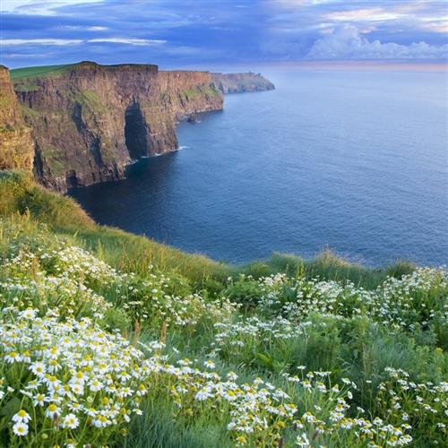 Irish Folksong, Has Sorrow Thy Young Days Shaded?, Piano, Vocal & Guitar (Right-Hand Melody)