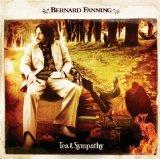Download Bernard Fanning Songbird sheet music and printable PDF music notes