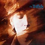 Download The Triffids 'Bury Me Deep In Love' printable sheet music notes, Pop chords, tabs PDF and learn this Piano, Vocal & Guitar (Right-Hand Melody) song in minutes