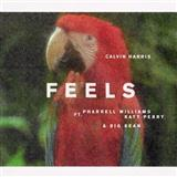 Download Calvin Harris 'Feels (featuring Pharrell Williams, Katy Perry and Big Sean)' printable sheet music notes, Pop chords, tabs PDF and learn this Piano, Vocal & Guitar (Right-Hand Melody) song in minutes