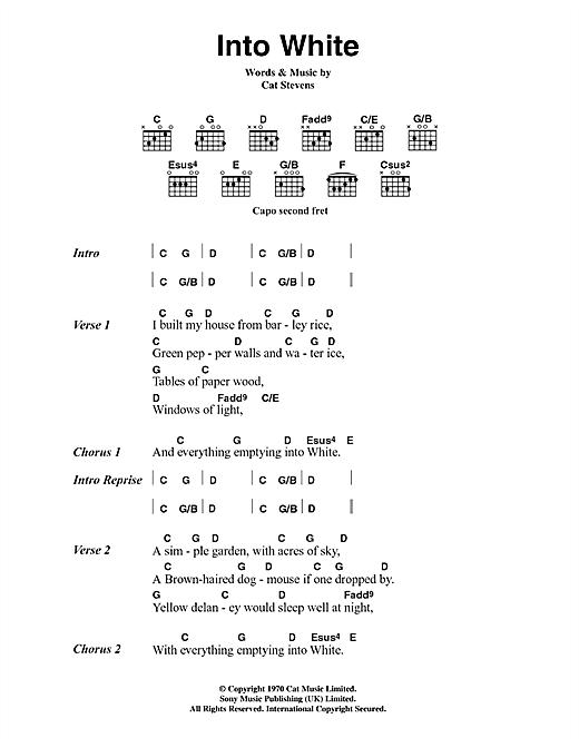 Into White sheet music