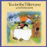 Download Cat Stevens Wild World sheet music and printable PDF music notes