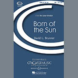 Download David Brunner Born Of The Sun sheet music and printable PDF music notes