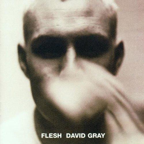 David Gray, Falling Free, Piano, Vocal & Guitar