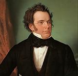 Download Franz Schubert Rosamunde Entr'acte sheet music and printable PDF music notes