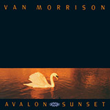 Download Van Morrison Have I Told You Lately sheet music and printable PDF music notes