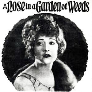 A Rose In A Garden Of Weeds sheet music