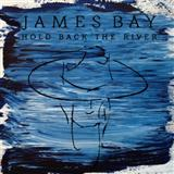 Download James Bay 'Hold Back The River' printable sheet music notes, Indie chords, tabs PDF and learn this Ukulele Lyrics & Chords song in minutes