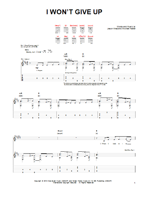 I Won't Give Up sheet music