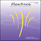 Download Jason Varga Flextrios - Beyond The Methods (16 Pieces) - Bass Clef Woodwind/brass Instruments sheet music and printable PDF music notes
