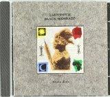 Download Ladysmith Black Mambazo Rain, Rain, Beautiful Rain sheet music and printable PDF music notes