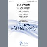 Download Philip Lawson Ardo, Si, Ma Non T'Amo sheet music and printable PDF music notes