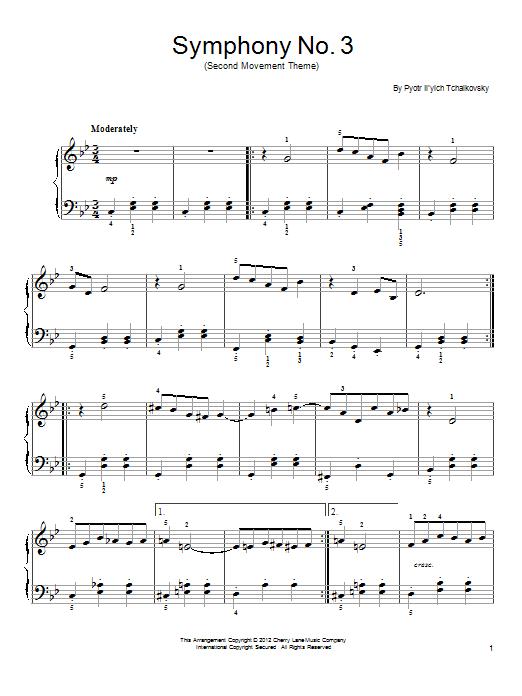 Symphony No. 3 In D Minor (