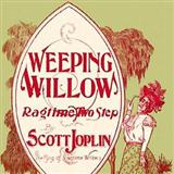 Download Scott Joplin 'Weeping Willow' printable sheet music notes, Jazz chords, tabs PDF and learn this Piano song in minutes