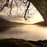 Download Scottish Folksong Loch Lomond sheet music and printable PDF music notes