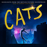 Download Steven McRae and Robbie Fairchild Skimbleshanks: The Railway Cat (from the Motion Picture Cats) sheet music and printable PDF music notes