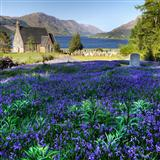 Download Mrs. Jordon, c. 1800 The Blue Bells Of Scotland sheet music and printable PDF music notes