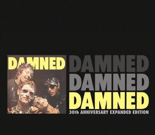 The Damned, New Rose, Lyrics & Chords
