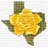 Download Traditional Folksong The Yellow Rose Of Texas sheet music and printable PDF music notes